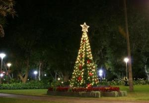 Christmas_tree08_HydePark